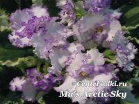 Ma's Arctic Sky (Robinson)