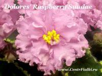 Dolores' Raspberry Sundae (D.Harrington)